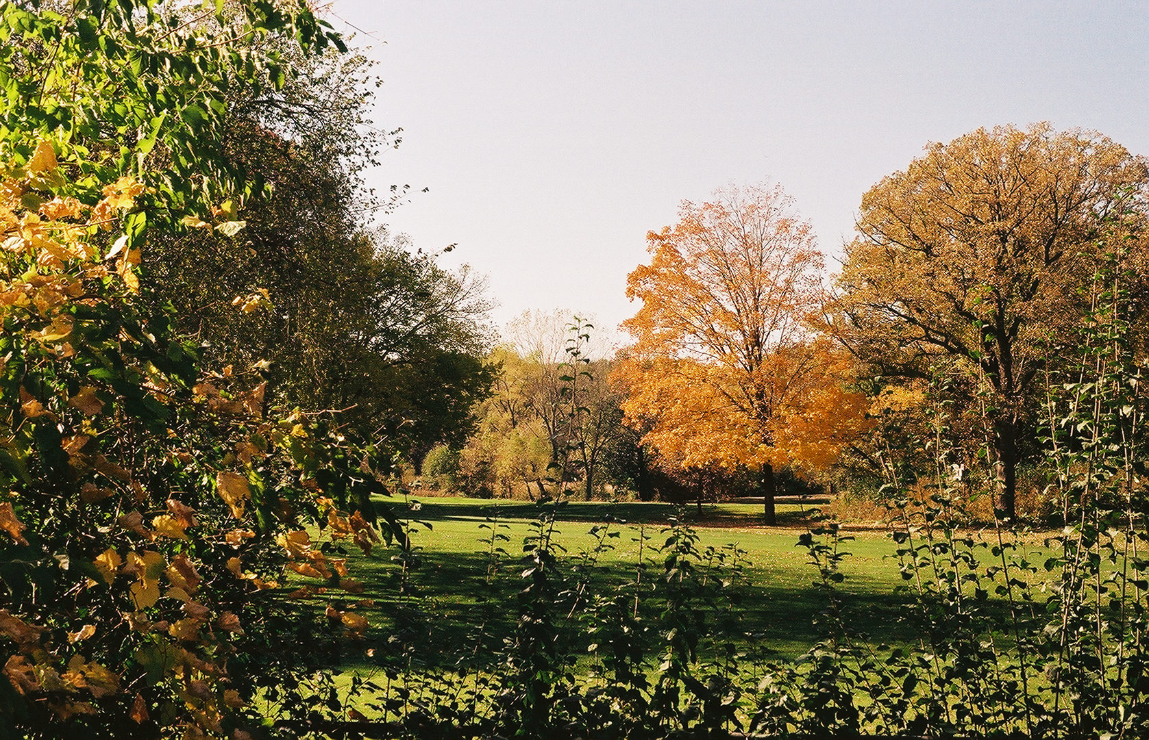 "Theodore Wirth Park. Image by <a href=""https://flic.kr/p/zywraX"" target=""_blank"">Passej/flickr</a>"